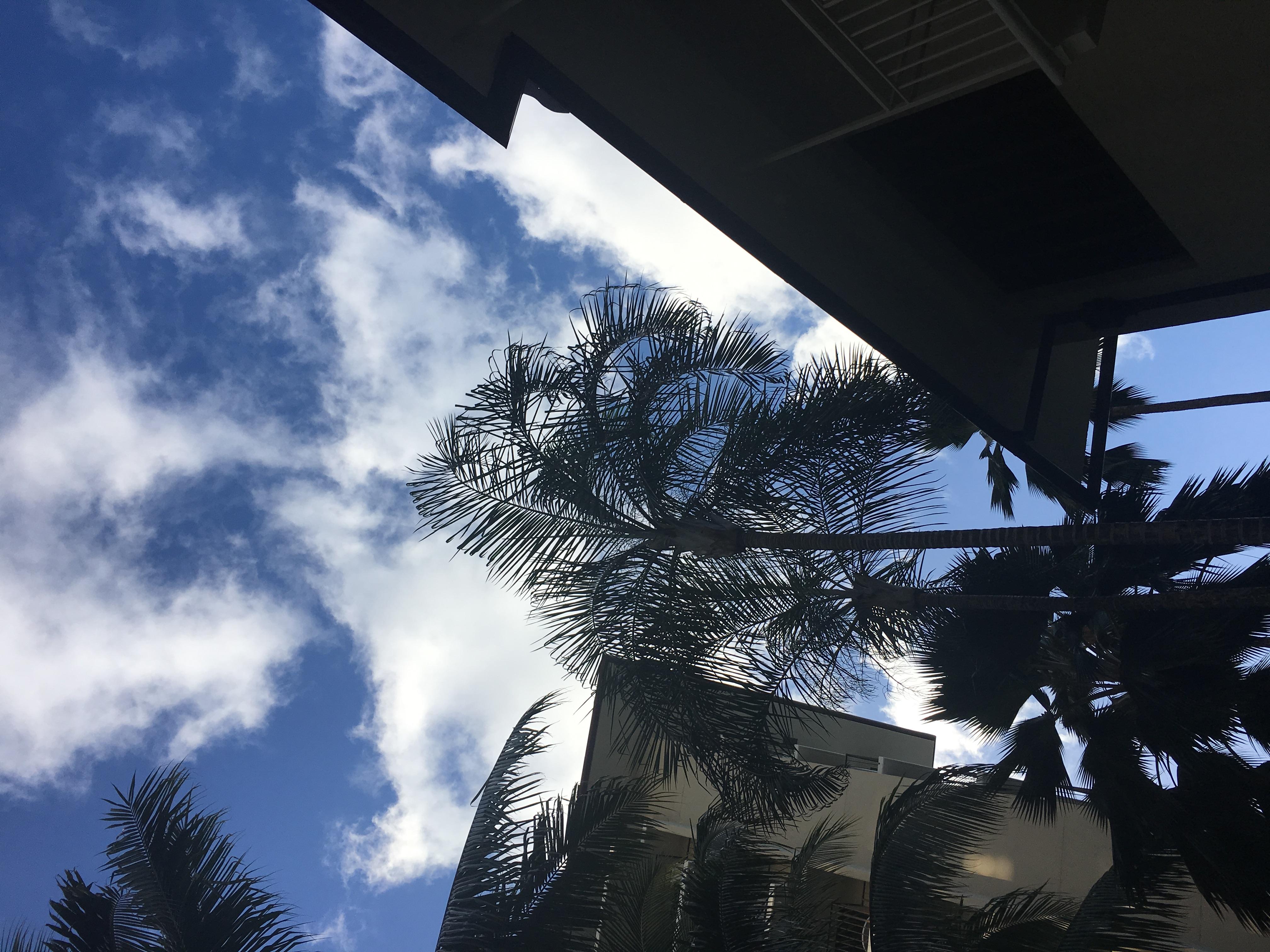 【アラモアナ・ショッピングセンター編】子連れハワイ旅行2018(3歳男、1歳女)4泊6日トランプインターナショナルホテルワイキキへ滞在